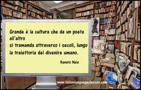 Renato Nale Aforisma La Cultura