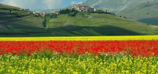 Abruzzo Parco Nazionale Gran Sasso Castelluccio